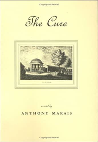 Front cover for the book The Cure by Anthony Marais