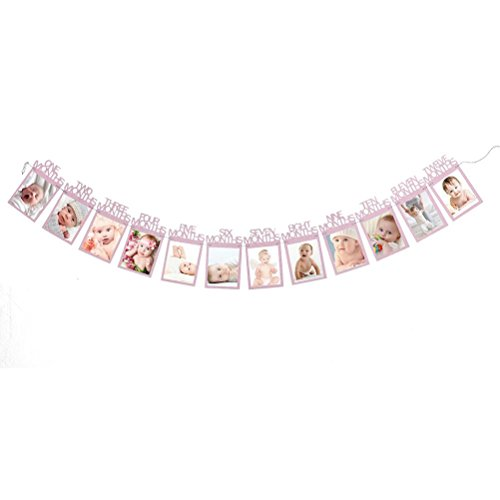 (Cocal Kids Birthday Gift Decorations 1-12 Month Photo Banner Monthly Photo Wall (Pink))