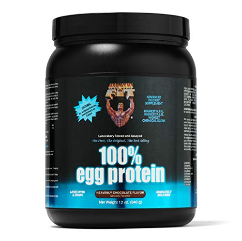 (Healthy 'n Fit 100% Egg Protein 12-Ounce Bottle Chocolate,  Tub)