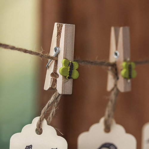 Everyday Use Miniature Wooden Spring Style Clothespins with Spring Green Butterflies Accents- Package of 40 -