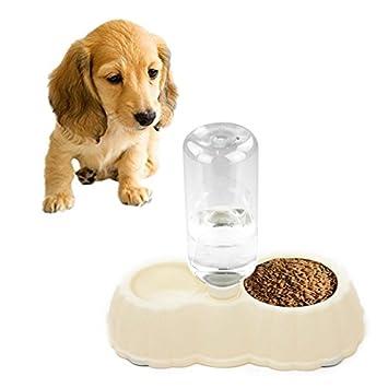 JIALUN-Productos para mascotas Calabaza forma perro comida para gatos plato + agua potable cuencos