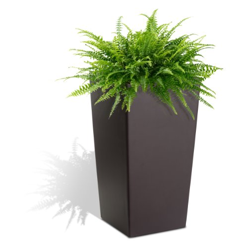 Algreen 11105 Self Watering Square Modena Planter, 30-Inch, Matte Mocha by Algreen