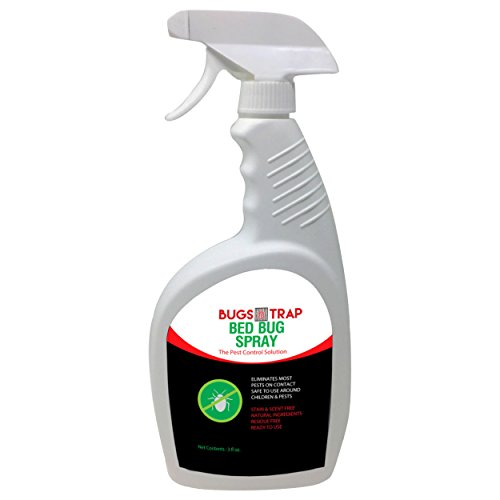 Bed Bug Killer Spray | All Natural, Non-Oily & Nontoxic Formula in an Ergonomic Bottle | Eradicates Eggs, Larvae, Bugs, Nymphs & Adult Bugs On Contact | Safe for Family, Pets & Kids by bugstrap