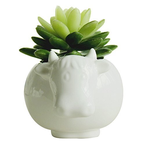 - GeLive Succulent Plants Pot Animal Planter White Cow Ceramic Flower Pot Home Decoration Vase
