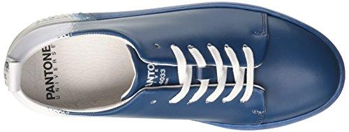 Poseidon Pantone Unisex Adulto Collo Blu Basso Sneaker NYC a 6q4wZx86