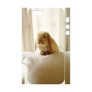 Cute rabbit DIY 3D for Case For Ipod Touch 5 Cover LMc-34600 at LaiMc