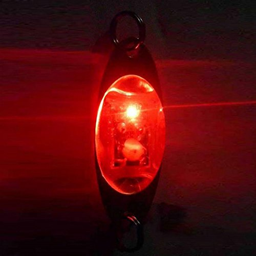 Leezo Stylish Fish Attractors New Shape Underwater Deep Drop Fishing Fish Lure Light Flashing Lamp LED (Shape Salmon)