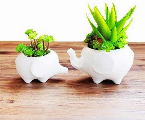 Clound city Cuted Elephant White Ceramic Succulent Planter Pot Flower Planters Home Decoration Vase