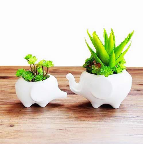 Clound city Cuted Elephant White Ceramic Succulent Planter Pot/Flower Planters/Home Decoration - Elephant Vase