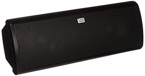 Acoustic Cymbals - Acoustic Audio AA40CB Indoor Center 3 Way Speaker 500 Watts Black Bookshelf