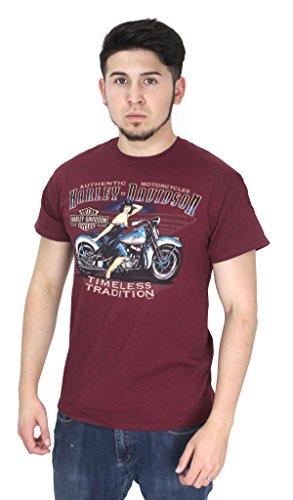Man On Harley Davidson - 2