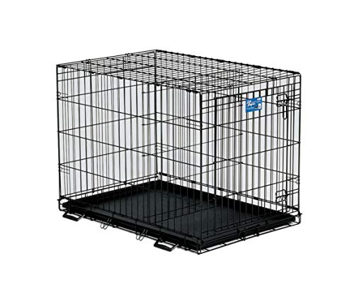 Large Midwest Life Stages - MidWest Homes for Pets Life Stages Single-Door Folding Metal Dog Crate - Black - 36 X 24 X 27 Inch