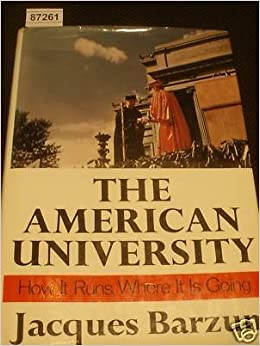 More about American University in Cairo