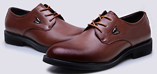 Diffyou Mens Formal Low Cut Wingtip Leather Oxfords Shoes Brown hmU0Eh