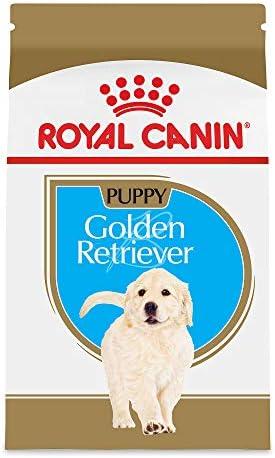 best dog food golden retriever puppy Royal Canin Breed Health Nutrition Golden Retriever Puppy