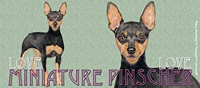 Miniature Pinscher Dog,Miniature Pinscher,Min Pin,Zwergpinscher,Coffee Mugs,Cup