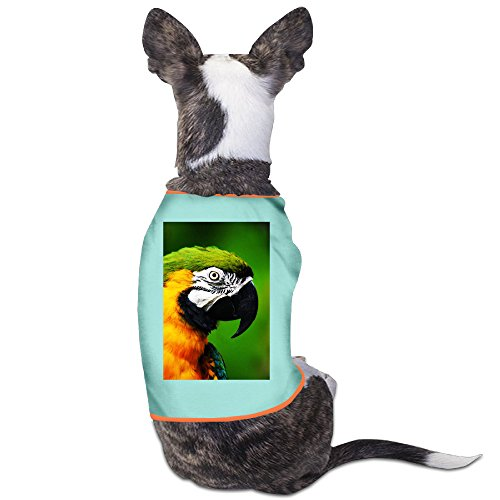 Parrot Eyes Small Dogs SoftCharming T Shirts Costumes