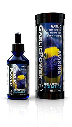 Brightwell Aquatics 2 fl. oz. Garlic Power Concentrated Garlic Supplement for Marine Fishes, 60 mL