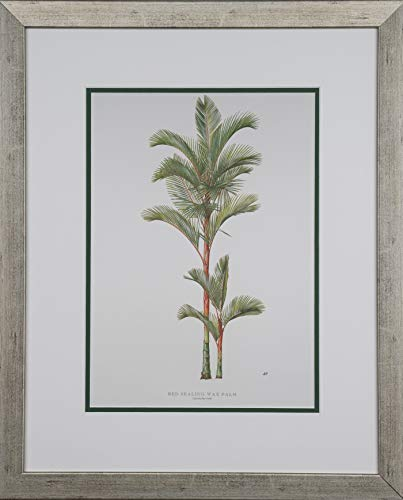Peebles, Diane Red Sealing Wax Palm 14x10 Print only 1 of Set of 5