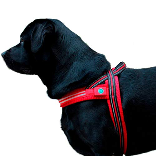 Led Dog Harness Large Breeds Escape Proof, No Pull, Reflective & Adjustable Maximizes Visibility When Walking or Running Your K9 Friend Allowing Your pet to be Safe from Dusk to Dawn!