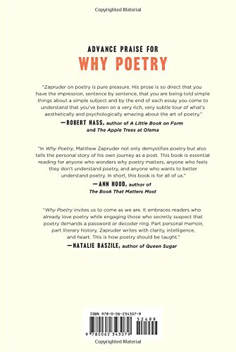 why poetry matthew zapruder com books