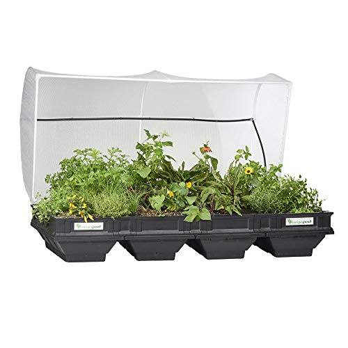 Vegepod - Raised Garden Bed Kit - Large 78.7in x 39.4in (2m x 1m) Self Watering Container Garden with Protective Cover, Easily Raised to Waist Height, 10 Years Warranty