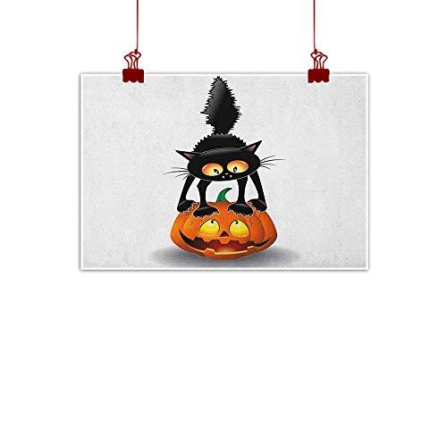 Outdoor Nature Inspiration Poster Wilderness Halloween,Black Cat on Pumpkin Drawing Spooky Cartoon Characters Halloween Humor Art, Orange Black 36