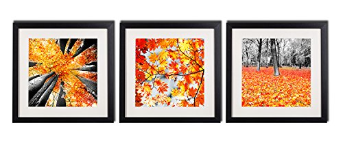 Theme Wall Prints Set (Framed Maple Tree Canvas Painting Prints Wall Art Decor Nature Autumn Theme Set Pictures Printed On Canvas Black White And Yellow Forest Landscape Photo Artworks 3 Piece Black Frames White Mat Poster)