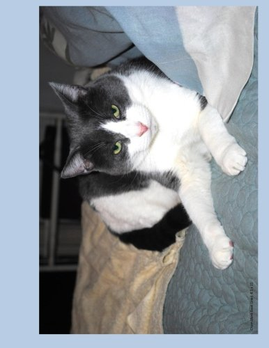 Read Online Cham Blank Book Lined 8.5 x 11: 8.5 by 11 inch lined blank book suitable as a journal, notebook, or diary with a cover photo of Cham from Ralphie's ... feline leukemia. (Cats of Ralphie's Retreat) pdf epub