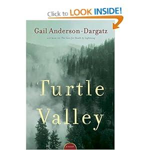 Turtle Valley Gail Anderson-Dargatz