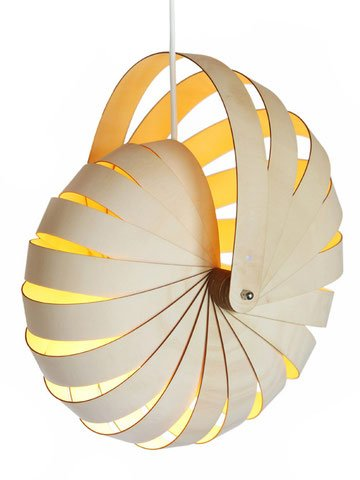 Nautilus Shell Pendant Light - 3