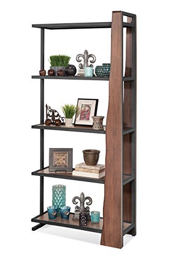 Philip Reinisch Co. Wildwood Live Edge Industrial Pier Bookcase Entertainment Display, Wood: Hand Rubbed/Distressed Chestnut Finish, Iron: Matte Black ()