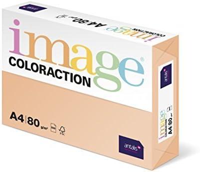 Antalis Coloraction Savana - Paper coloreado (500 folios, 80 g/m², para todo tipo de impresoras), color salmón: Amazon.es: Oficina y papelería