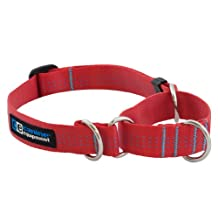 Canine Equipment Technika 3/4-Inch All Webbing Martingale Dog Collar, Small, Red
