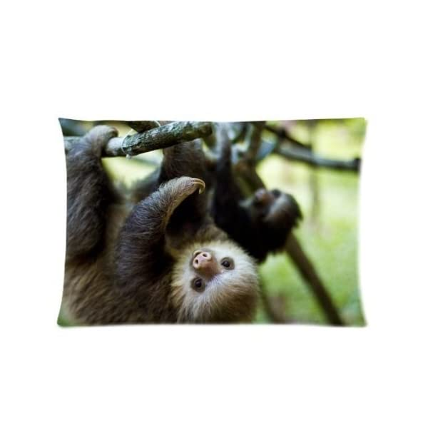 Pillowcase Animals Cute Sloth Hanging In The Tree Design Zippered Pillowslip Decorate Sofa Bed Pillow Case Cover(20 30 Inches) -
