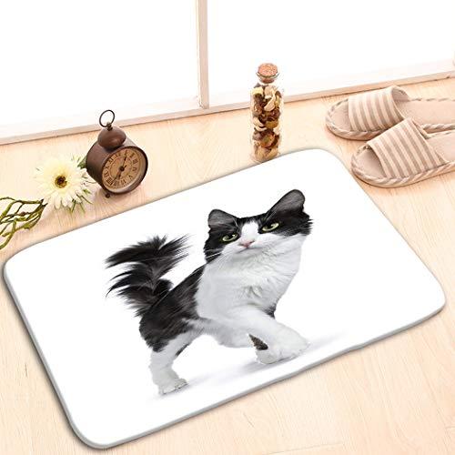 zexuandiy Area Rug Lightweight Doormat Memory Sponge Indoor Outdoor Decor Living Room Bedroom Office Kitchen (23.6