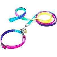 LA FESTA FAISCA Collar y Correa para Perros Mascotas, Collar Ajustable, Arcoiris Rainbow Color, Correa práctica para Perros de Nylon (Mediana)