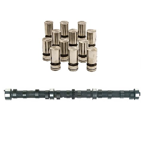 Jeep AMC Camshaft Lifters Kit Cam hydraulic flat tappet 4.0L 242ci 1987-95 (Stock Replacement)