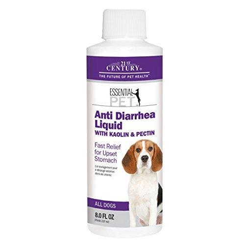 21st Century Anti Diarrhea Dog Liquid