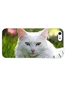 3d Full Wrap Case For Ipod Touch 5 Cover Animal Interesting Eyes