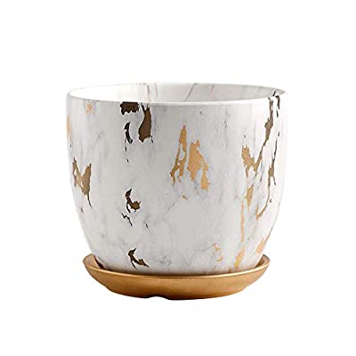 Marble Plant Pot, 6 inch Modern Nordic Style Ceramic Marble Look Scrub Pots for Plants-Plant Pots Indoor with Drainage Hole and Ceramic Tray for Succulents/Plants/Flowers: Garden & Outdoor