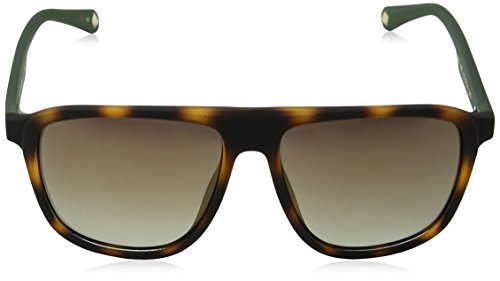 Ted Baker Sunglasses Kirby, Montures de Lunettes Homme, Rouge (Burgundy), 57