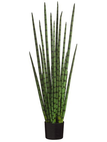 4' Snake Grass in Black Plastic Pot Green (Pack of 2) by Silk Decor