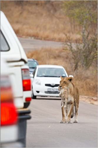 Lioness with Cub in Traffic in South Africa Journal: 150 page lined notebook/diary