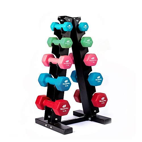 Fitness Alley Steel Dumbbell Rack – 5 Tier Weight Holder & 5 Tier Weight Rack Dumbbell Stand – Dumbbell Holder – Dumbbell Rack Stand (5 Tier Rack & 3,6,7,10,12 lbs Dumbbells)