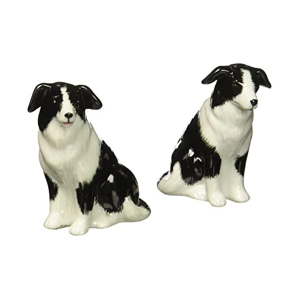 Cosmos 20870 Gifts Ceramic Border Collie Salt and Pepper Set, 2-1/2-Inch 1