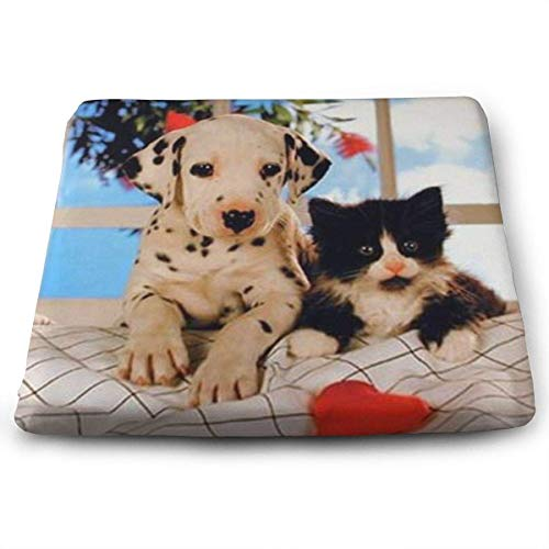 Han Jun Hua Soft Breathable Hip Cushions Forever Dalmatian Dog and Cat Square Chair Seat Pads CushionManual Customization,Eco-Friendly (Tone Upholstery)