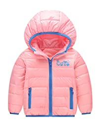 Baby Boys Girls Winter Puffer Warm Down Coat Thicken Hoodie Outwear Lightweight Windproof Jacket 2-3T Pink