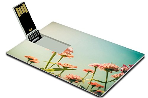 Luxlady 32GB USB Flash Drive 2.0 Memory Stick Credit Card Size Zinnia flower and blue sky in the garden nature and park vintage IMAGE 28849347