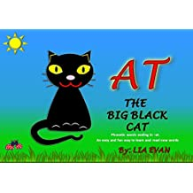 AT THE BIG BLACK CAT: Phonetic words ending in -at. An easy and fun way to learn and read new words